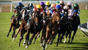 South Carolina Horse Racing Betting Supported by State Lawmakers